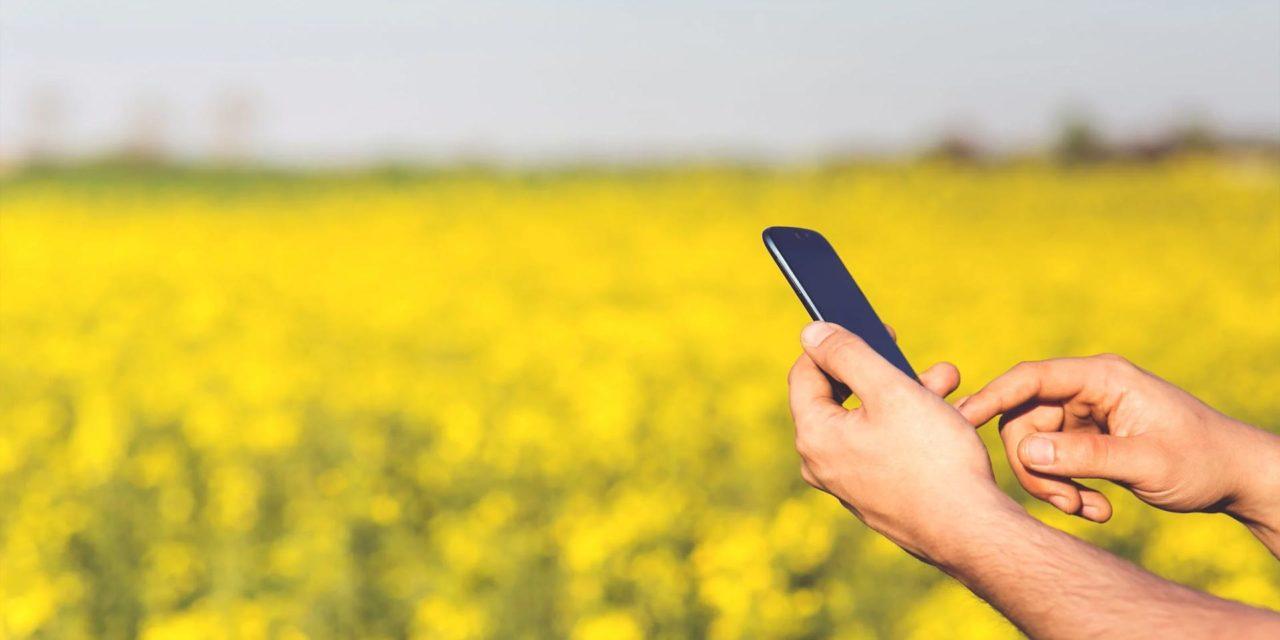 Récapitulatif des logiciels utilisés dans l'industrie agroalimentaire