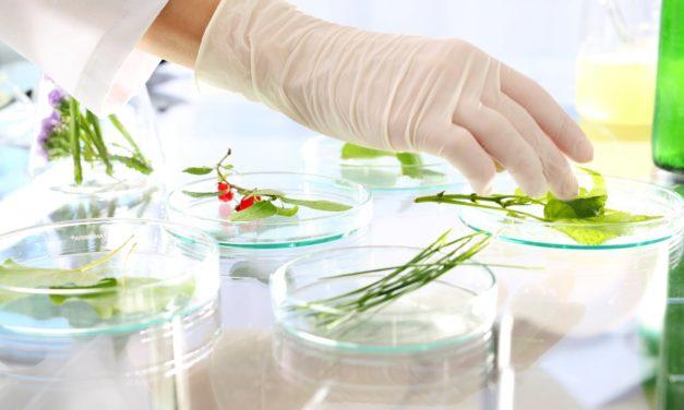 Quel est le rôle du processus de spécifications des produits dans l'industrie alimentaire ?